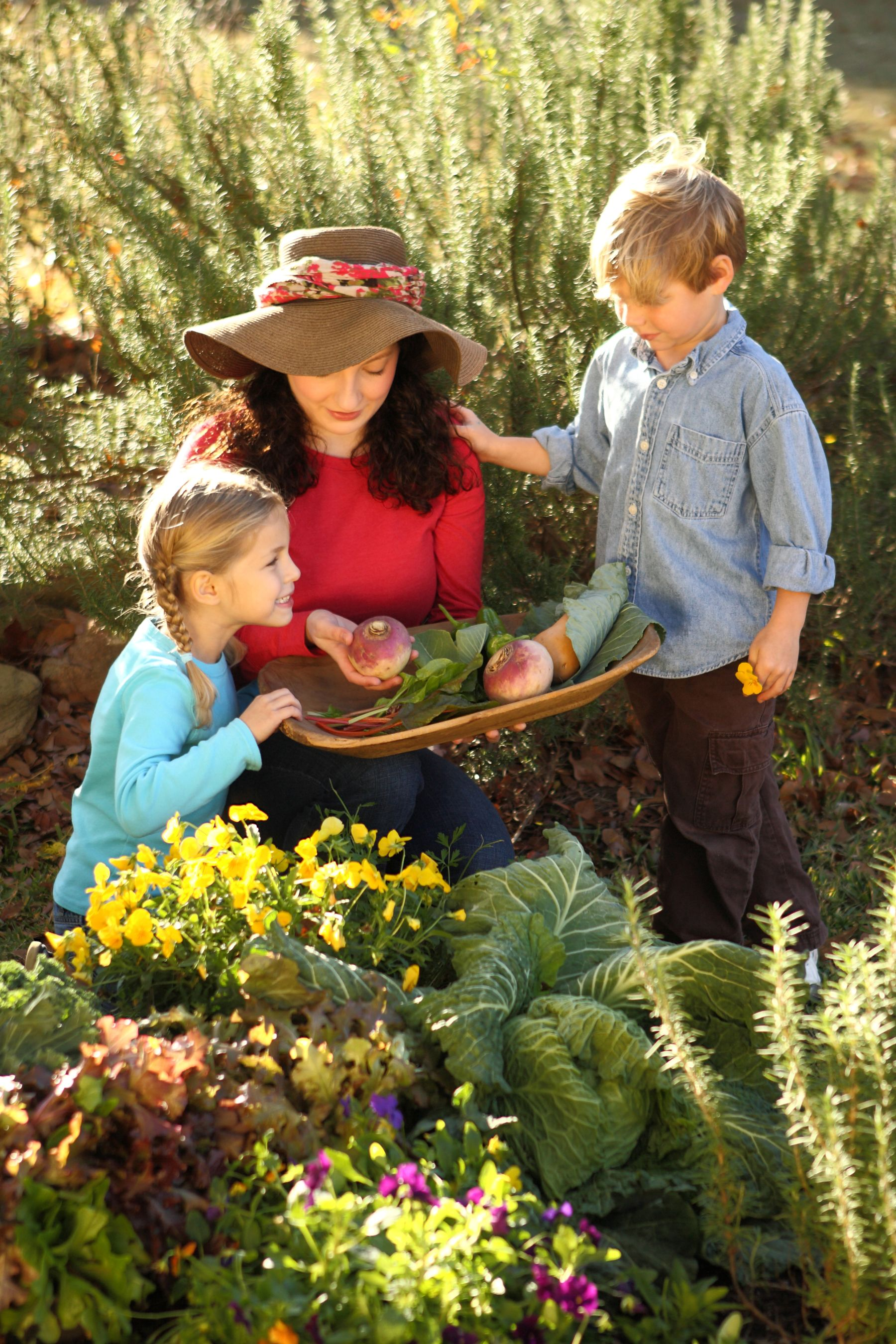 Keep Growing With Season Extending Gardening Tips For Fall